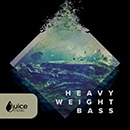 Heavyweight Bass