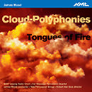 James Wood: Cloud-Polyphonies & Tongues of Fire
