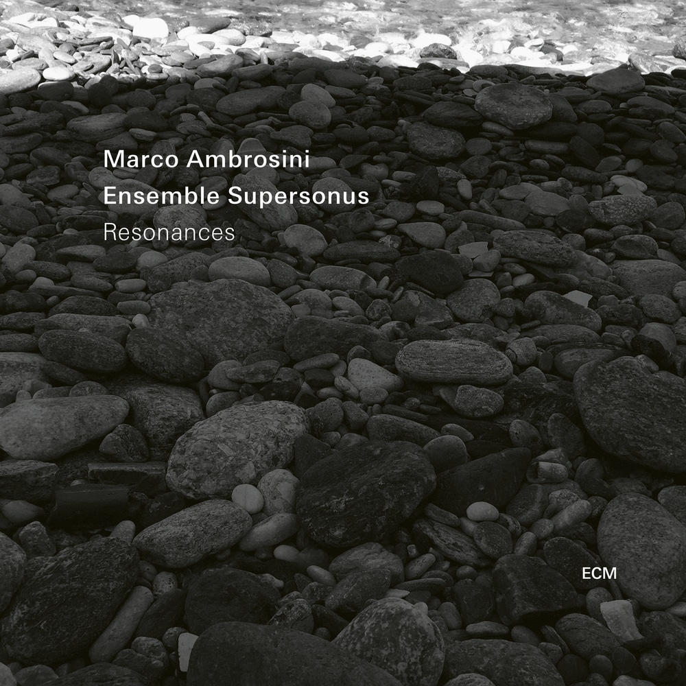 Image result for Marco Ambrosini & Ensemble Supersonus - Resonances